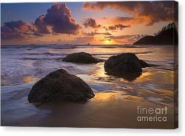 Reflected In The Sand Canvas Print by Mike  Dawson