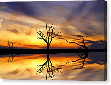 Reflected Sunset Canvas Print by David Simons