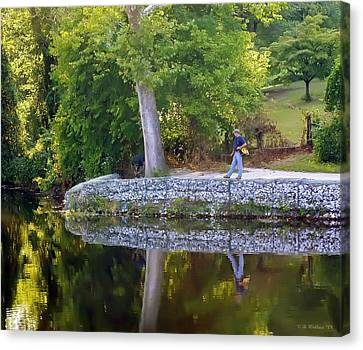 Reflecting Canvas Print by Brian Wallace