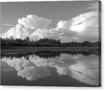 Reflecting Clouds Canvas Print by Gene Cyr