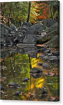Reflecting On Fall Canvas Print by Susan Candelario