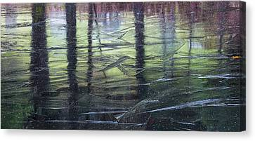 Canvas Print featuring the photograph Reflecting On Transitions by Mary Amerman