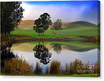 Reflecting Pond In Bucolic Stillness Amongst The Hills Canvas Print