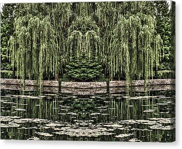 Reflecting Willows Canvas Print by Rebecca Hiatt