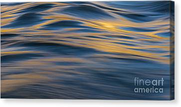 Reflection 2 Canvas Print by Iksung N