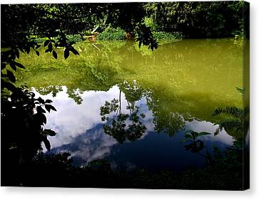 Reflection Canvas Print by Arie Arik Chen