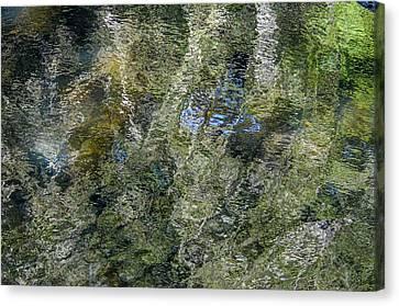 Reflection Art Canvas Print by Roxy Hurtubise