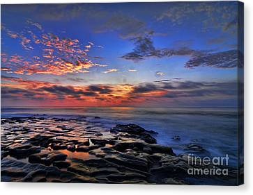 Sunset At Tide Pools At La Jolla Canvas Print by Peter Dang