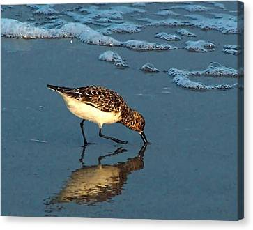 Canvas Print featuring the photograph Reflection At Sunset by Sandi OReilly