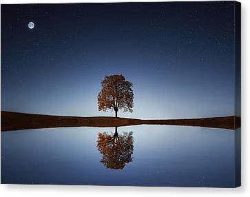 Reflection Canvas Print by Bess Hamiti