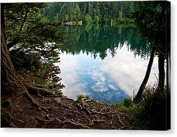 Reflection Canvas Print by Crystal Hoeveler