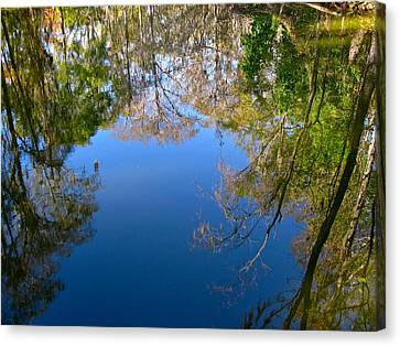 Reflection Canvas Print by Denise Mazzocco