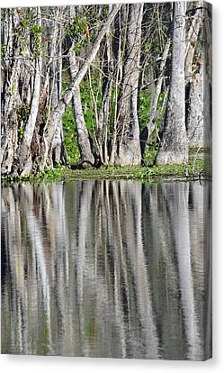 Reflection In Silver Springs River Canvas Print by Bruce Gourley