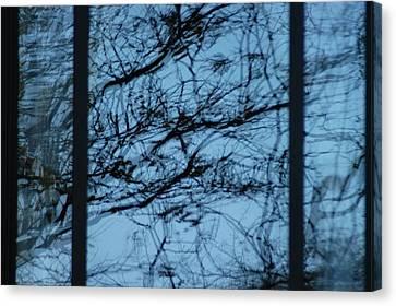 Reflection Canvas Print by Joseph Yarbrough