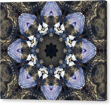 Reflection  Kaleidoscope Canvas Print