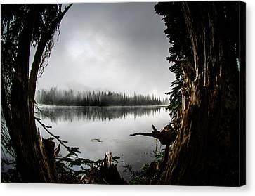 Reflection Lake Through The Stump Canvas Print by Brian Xavier