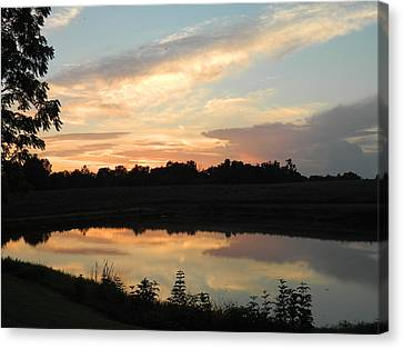 Reflection Canvas Print by Linda Brown