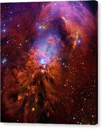 Nebula Canvas Print - Reflection Nebula Ngc 1999 by Robert Gendler
