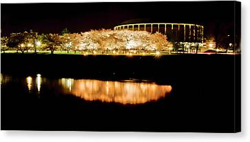 Reflection Of Cherry Blossoms Canvas Print by Shirley Tinkham