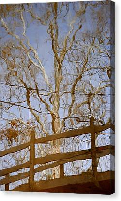Reflection Canvas Print by Frozen in Time Fine Art Photography