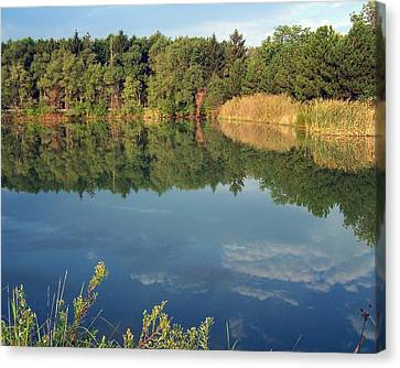 Canvas Print featuring the photograph Reflection by Teresa Schomig