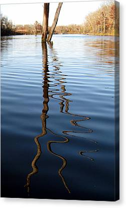 Reflections 1 Canvas Print by Jamie Seul