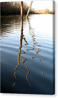 Reflections 2 Canvas Print by Jamie Seul