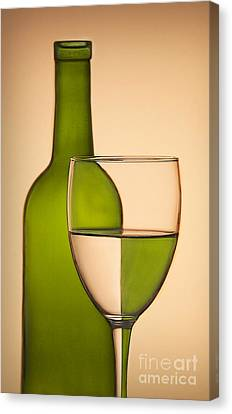 Reflections And Refractions Canvas Print by Susan Candelario