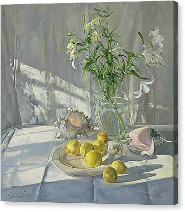 Reflections And Shadows  Canvas Print by Timothy  Easton