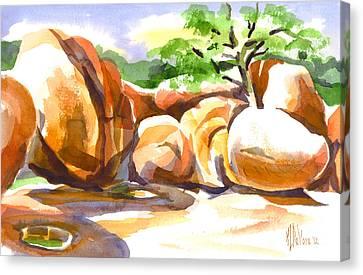 Reflections At Elephant Rocks B Canvas Print by Kip DeVore