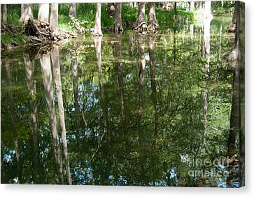 Reflections Canvas Print by Barbara Shallue