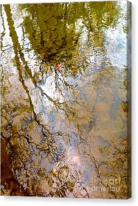 Reflections Canvas Print by Delona Seserman