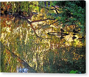 Reflections In Bayou Robert Canvas Print by Louis Nugent