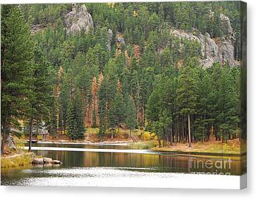 Canvas Print featuring the photograph Reflections by Mary Carol Story