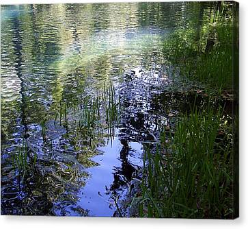 Canvas Print featuring the photograph Reflections  by Mary Wolf