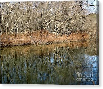 Reflections Canvas Print by Melissa Stoudt