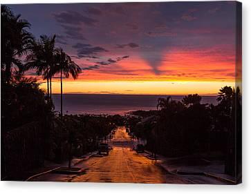 Sunset After Rain Canvas Print by Denise Bird