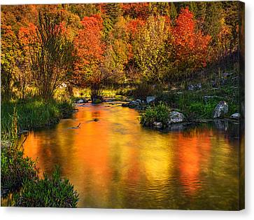 Reflections Of Autumn Canvas Print by Leland D Howard