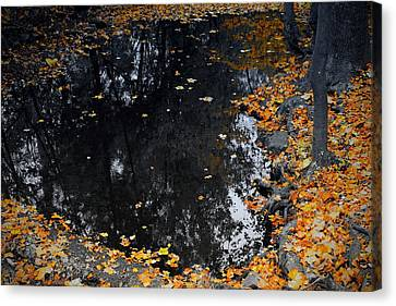 Canvas Print featuring the photograph Reflections Of Autumn by Photographic Arts And Design Studio