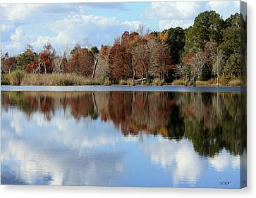 Reflections Of Color Canvas Print by Debra Forand