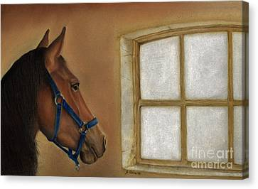 Reflections Of Days Gone By Canvas Print by Sheryl Unwin