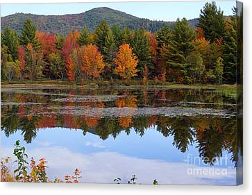 Reflections Of Fall Canvas Print