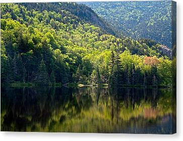 Reflections Of Majesty Canvas Print