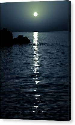 Reflections Of Moon Canvas Print by Wladimir Bulgar