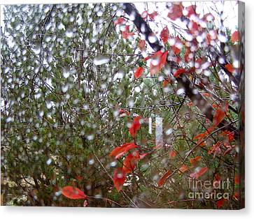 Reflections Of Rain Canvas Print