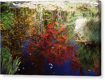 Canvas Print featuring the photograph Reflections On Algonquin by David Porteus