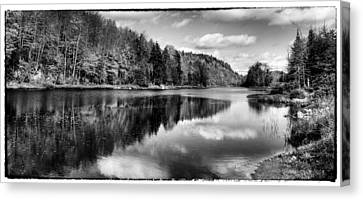 Reflections On Bald Mountain Pond Canvas Print by David Patterson