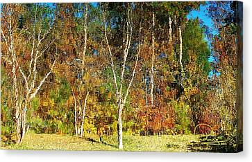 Canvas Print featuring the photograph Reflections On Fall by Ludwig Keck