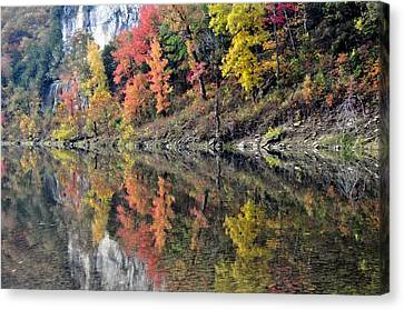 Reflections On The Buffalo Canvas Print by Marty Koch