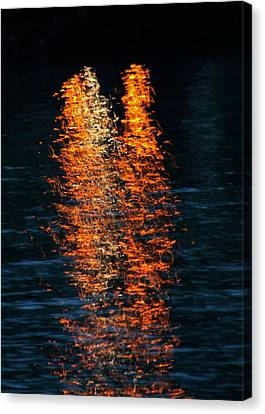 Reflections Canvas Print by Pamela Walton